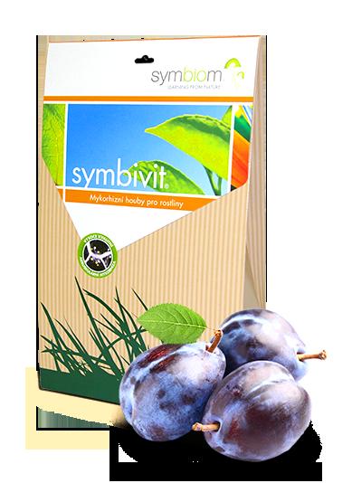 10. Symbivit śliwki